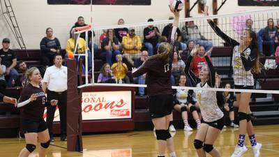 Regional volleyball briefs for area schools