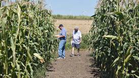 Wallace birthplace farm showcases history of corn varieties